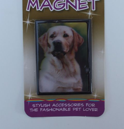 Golden Labrador 3D fridge magnet